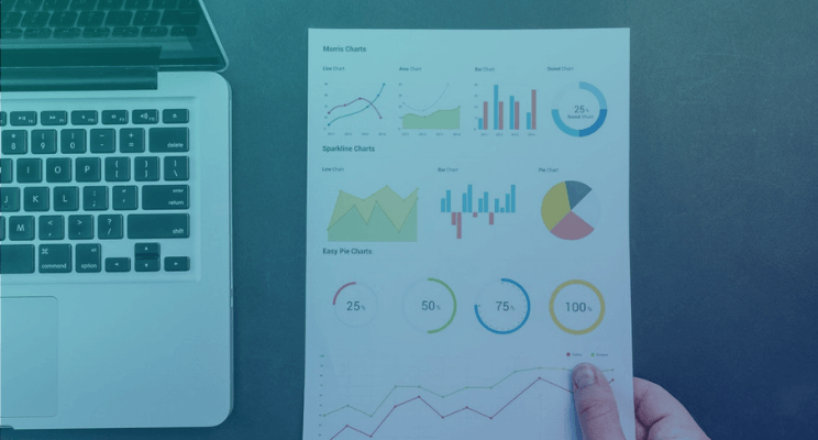 Organize e não perca informações da sua base de dados